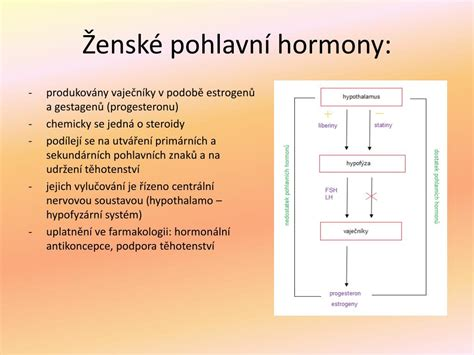 PPT - Chemie léčiv PowerPoint Presentation, free download