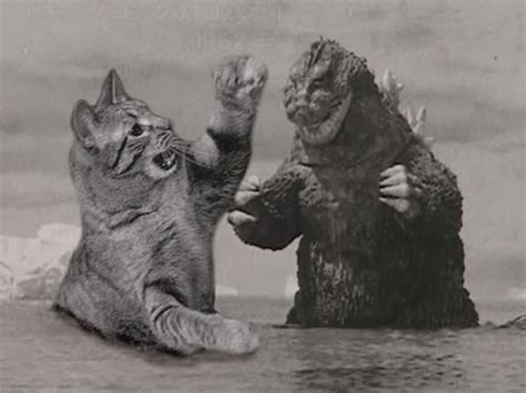 The Ultimate Battle! Godzilla Versus Cats! | Riot Daily