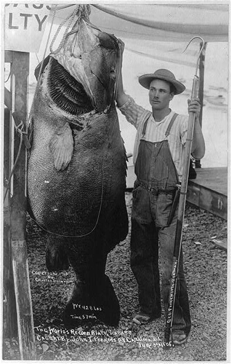 16 Vintage Fishing Photos of Great Catches Back in the Day