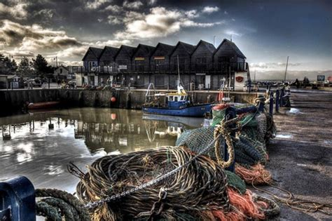 Crab and Winkle | Seafood Restaurant | Whitstable, Kent