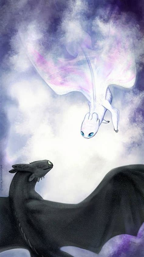 Toothless and Light Fury flying together in the sky | How