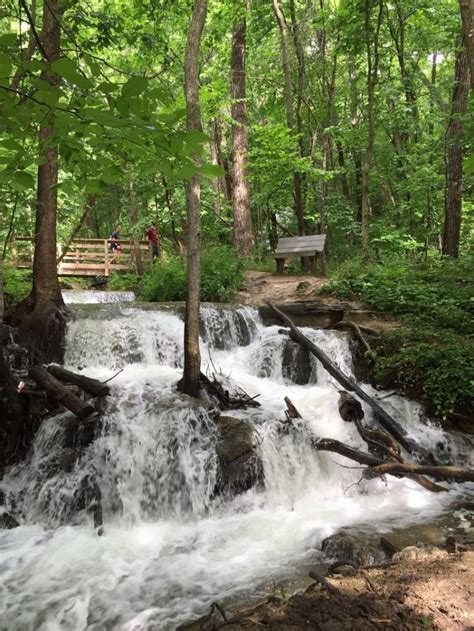 The 10 Easiest Hiking Trails In Missouri